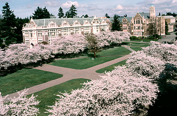 Đại học Washington Seattle