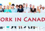 Cơ hội làm việc với chương trình khóa học ngắn hạn tại Canada