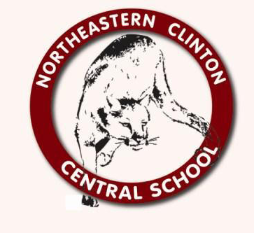 Trường Northeastern Clinton Central High School